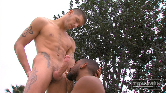 Tattooed Muscle Jock Gets His Cock Sucked