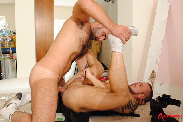 Bruno Knight and Ben Brown Alphamales gay porn star naked men hunk ass fuck man hole muscle gay sex asshole fucking anal 014 gallery video photo Bruno Knight and Ben Brown