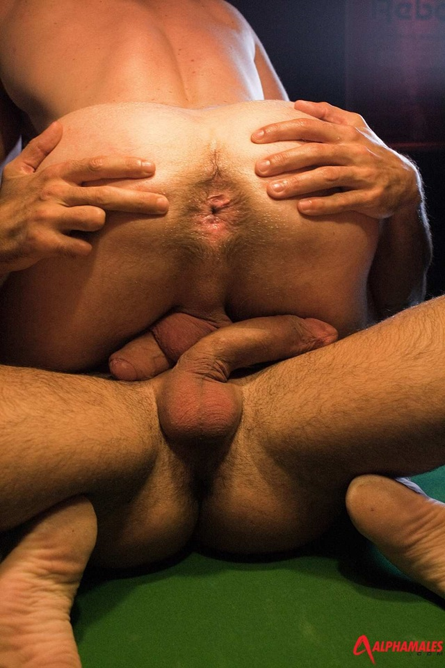 Scott Hunter and Issac Jones Alphamales gay porn star naked men hunk ass fuck man hole muscle gay sex asshole fucking anal 007 red tube gallery photo Scott Hunter and Issac Jones