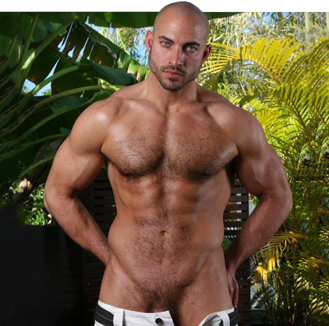 Legend-Men-huge-hairy-chested-muscle-bodybuilder-Damian-Armani-body-huge-dick-shaved-headed-hunk-018-male-tube-red-tube-gallery-photo