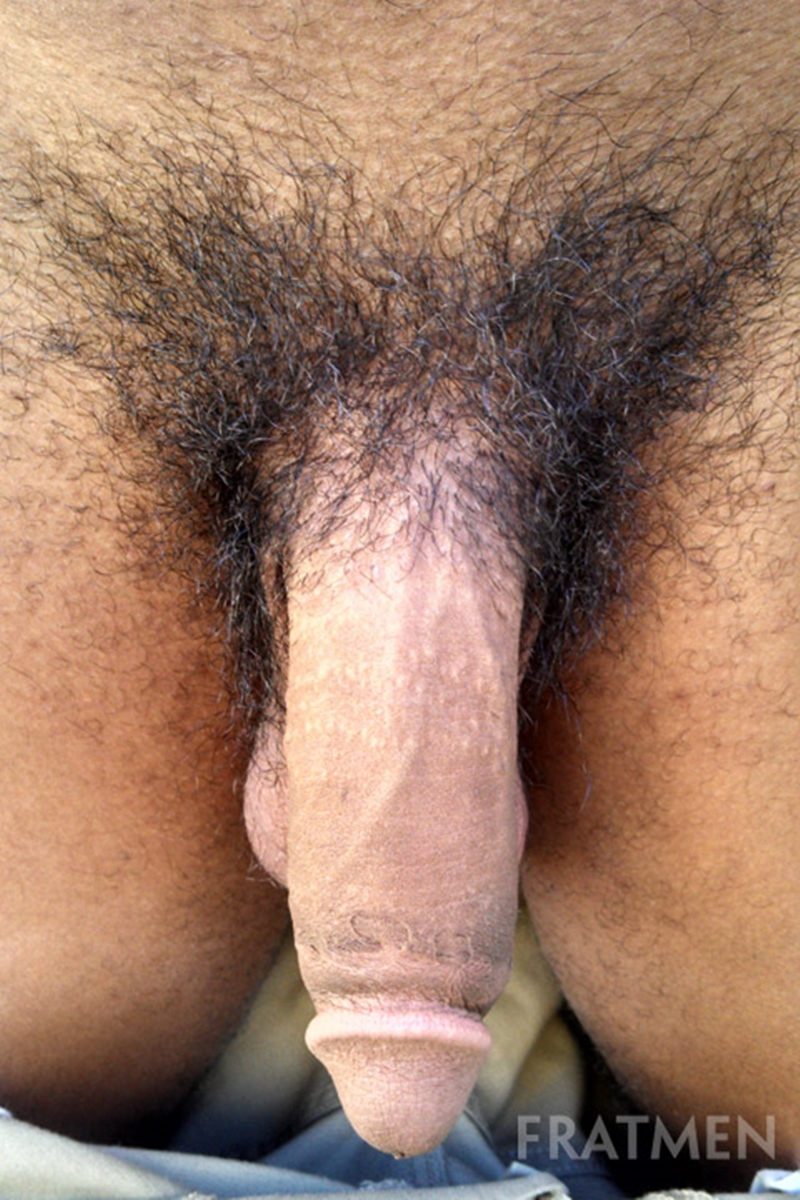 from Titan gay big dick jerk off tube