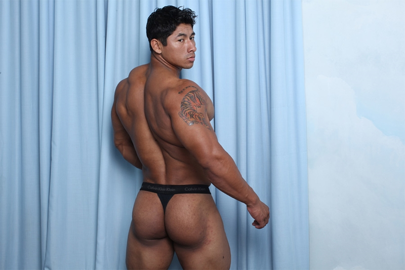 gay bodybuilder gay bodybuilders asian muscle asian bodybuilder gay gay