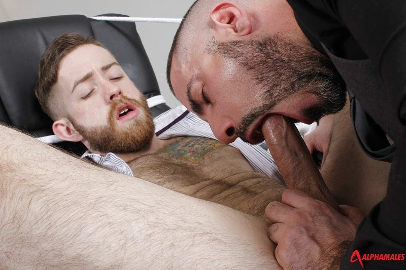 Alphamales-Michel-Rudin-boss-Alfie-Stone-suit-underwear-big-cock-fucked-cum-load-tight-hairy-ass-hole-wanks-004-tube-download-torrent-gallery-sexpics-photo