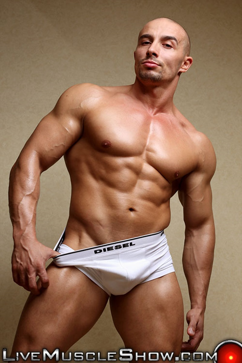 Live Muscle Show Viny Knight