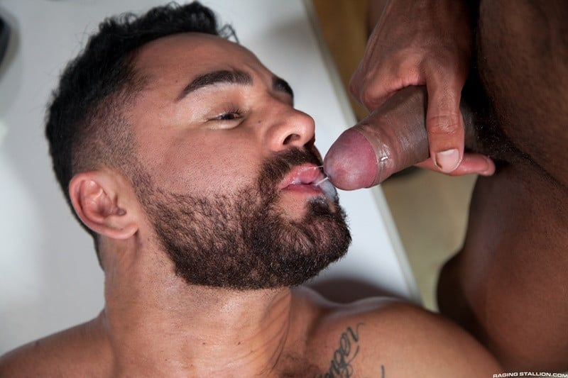 Men for Men Blog RagingStallion-Bruno-Bernal-ass-fucking-big-naked-dicks-Jay-Landford-butt-hole-rimming-cocksucking-015-gallery-video-photo Bruno Bernal moans loudly as Jay Landford's huge dick stretches his butt hole to the max Raging Stallion  tongue Streaming Gay Movies Smooth ragingstallion.com RagingStallion Tube RagingStallion Torrent RagingStallion Jay Landford RagingStallion Bruno Bernal raging stallion premium gay sites Porn Gay nude RagingStallion naked RagingStallion naked man jockstrap jock Jay Landford tumblr Jay Landford tube Jay Landford torrent Jay Landford RagingStallion com Jay Landford pornstar Jay Landford porno Jay Landford porn Jay Landford penis Jay Landford nude Jay Landford naked Jay Landford myvidster Jay Landford gay pornstar Jay Landford gay porn Jay Landford gay Jay Landford gallery Jay Landford fucking Jay Landford cock Jay Landford bottom Jay Landford blogspot Jay Landford ass hot naked RagingStallion Hot Gay Porn hole HIS gay video on demand gay vid gay streaming movies Gay Porn Videos Gay Porn Tube Gay Porn Blog Free Gay Porn Videos Free Gay Porn face Cock cheeks cheek Bruno Bernal tumblr Bruno Bernal tube Bruno Bernal torrent Bruno Bernal RagingStallion com Bruno Bernal pornstar Bruno Bernal porno Bruno Bernal porn Bruno Bernal penis Bruno Bernal nude Bruno Bernal naked Bruno Bernal myvidster Bruno Bernal gay pornstar Bruno Bernal gay porn Bruno Bernal gay Bruno Bernal gallery Bruno Bernal fucking Bruno Bernal cock Bruno Bernal bottom Bruno Bernal blogspot Bruno Bernal ass ass